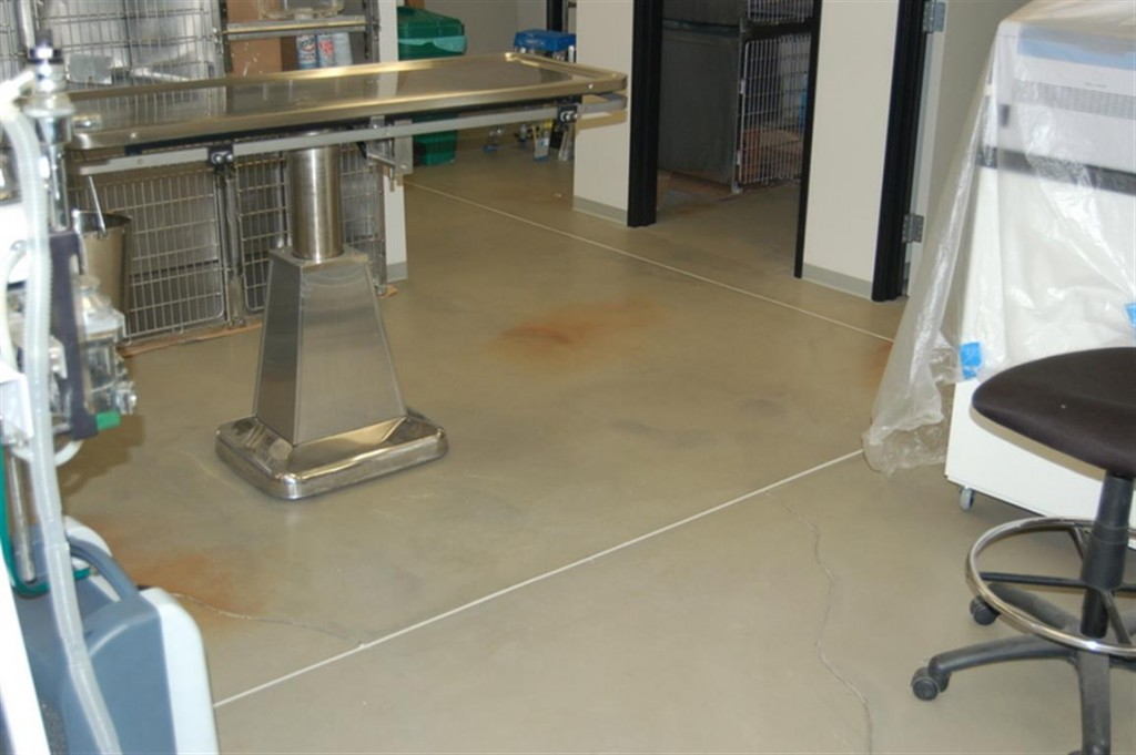 Office floor stain and seal